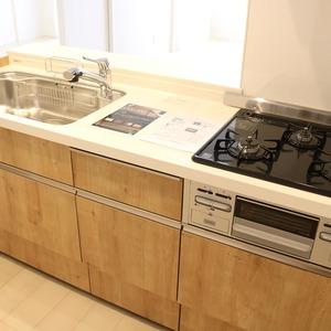 マイキャッスル入谷(9階,4480万円)のキッチン
