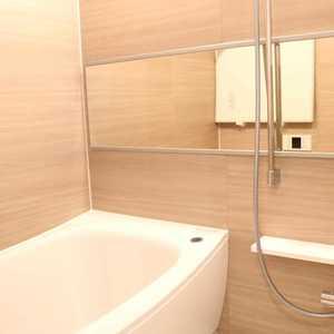 マイキャッスル入谷(9階,4480万円)の浴室・お風呂