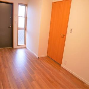 ディナスカーラ上北沢(3階,4580万円)の納戸