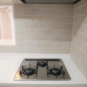 ディナスカーラ上北沢(3階,4580万円)のキッチン