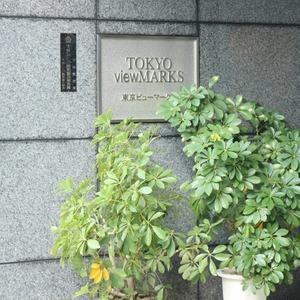 東京ビューマークスの外観