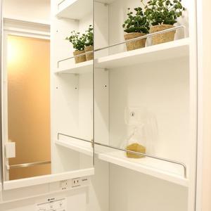 東京ビューマークス(2階,5480万円)の化粧室・脱衣所・洗面室
