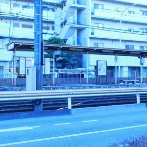 ヴィルヌーブ西早稲田の最寄りの駅周辺・街の様子