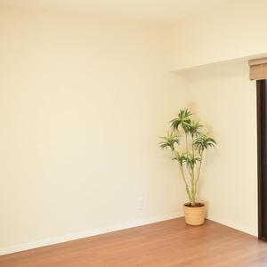 ヴェルデ青山(2階,)の洋室