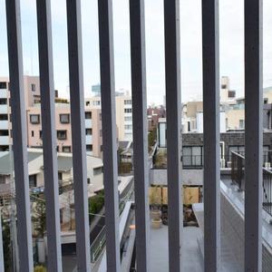 ファイン青山(6階,)のフロア廊下(エレベーター降りてからお部屋まで)