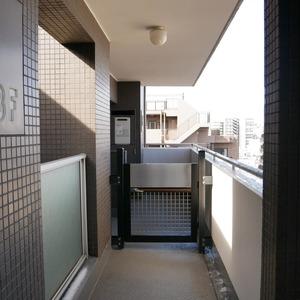コスモ亀戸アネックス(8階,4480万円)のフロア廊下(エレベーター降りてからお部屋まで)