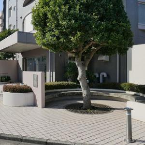 コスモ亀戸アネックスのその他周辺施設