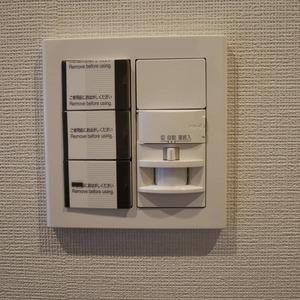 コスモ亀戸アネックス(8階,4480万円)のお部屋の玄関