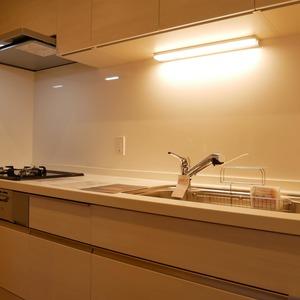 コスモ亀戸アネックス(8階,4480万円)のキッチン