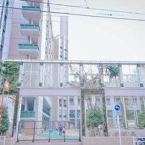 ヴェラハイツ日本橋の保育園、幼稚園、学校