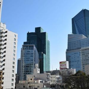秀和溜池山王レジデンス(7階,)のお部屋からの眺望