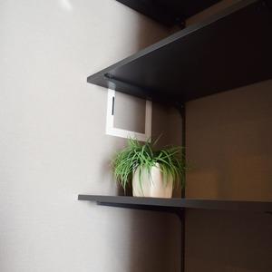 秀和溜池山王レジデンス(7階,)の居間(リビング・ダイニング・キッチン)