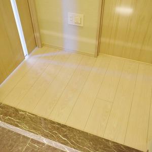 クラッシィスイートジオ東麻布(3階,6180万円)のお部屋の廊下