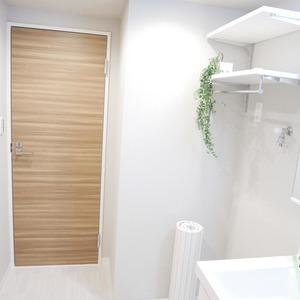 ライオンズマンション桜上水(6階,3299万円)の化粧室・脱衣所・洗面室