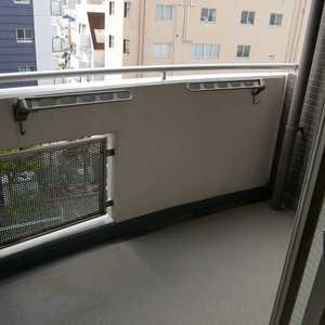 コスモ亀戸アネックス(6階,3799万円)のバルコニー