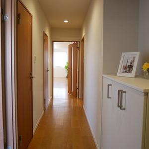 コスモ亀戸アネックス(5階,3780万円)のお部屋の廊下