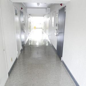 ライオンズマンション桜上水(5階,)のフロア廊下(エレベーター降りてからお部屋まで)
