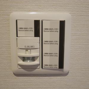 コスモ亀戸アネックス(5階,3780万円)のお部屋の玄関