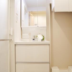 ライオンズマンション桜上水(5階,)の化粧室・脱衣所・洗面室