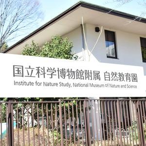 マンション京都白金台の近くの公園・緑地