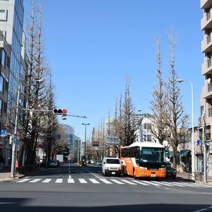 マンション京都白金台の最寄りの駅周辺・街の様子