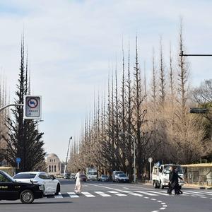 青山ザタワーの近くの公園・緑地