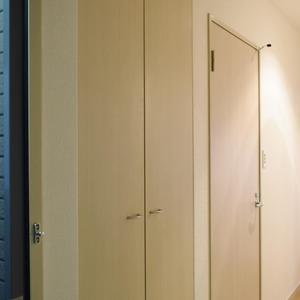 デュオスカーラ虎ノ門(2階,4780万円)のお部屋の玄関