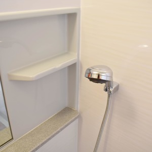 デュオスカーラ虎ノ門(2階,4780万円)の浴室・お風呂