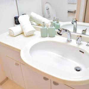 デュオスカーラ虎ノ門(2階,4780万円)の化粧室・脱衣所・洗面室