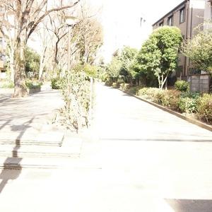 セザール元代々木の最寄りの駅周辺・街の様子