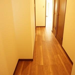セザール元代々木(3階,6299万円)のお部屋の廊下