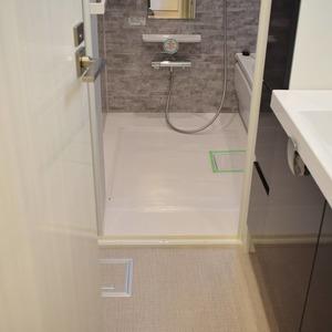第2広尾フラワーハイホームA棟(8階,4699万円)の化粧室・脱衣所・洗面室
