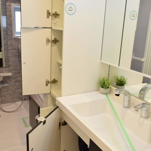 第2広尾フラワーハイホームA棟(8階,)の化粧室・脱衣所・洗面室