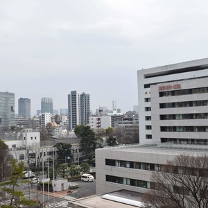 第2広尾フラワーハイホームA棟(8階,4699万円)のお部屋からの眺望
