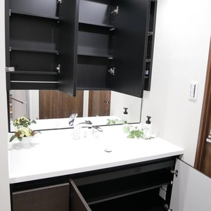 ファミールグラン高井戸デュープレックス(7階,6780万円)の化粧室・脱衣所・洗面室