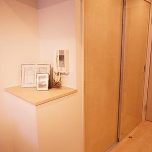 ダイアパレス幡ヶ谷第2(5階,3680万円)のクローゼット