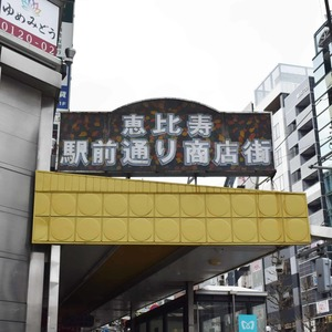 マンション第2恵比須苑の最寄りの駅周辺・街の様子