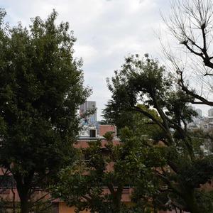 日商岩井恵比寿マンション(3階,6490万円)のお部屋からの眺望