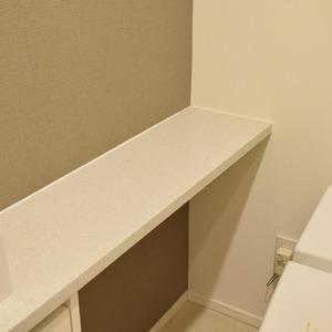 ザパークハウス代官山(2階,)のトイレ