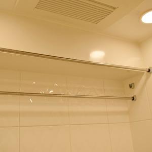ザパークハウス代官山(2階,1億900万円)の浴室・お風呂