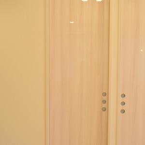 ザパークハウス代官山(2階,1億900万円)のウォークインクローゼット