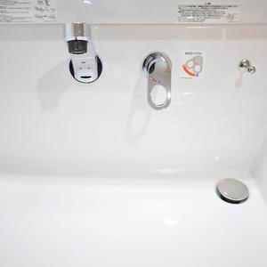 マンション第2恵比須苑(4階,5380万円)の化粧室・脱衣所・洗面室