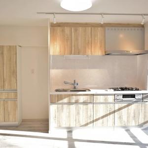 マンション第2恵比須苑(3階,4880万円)の居間(リビング・ダイニング・キッチン)