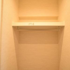 秀和麻布笄町レジデンス(3階,)のウォークインクローゼット