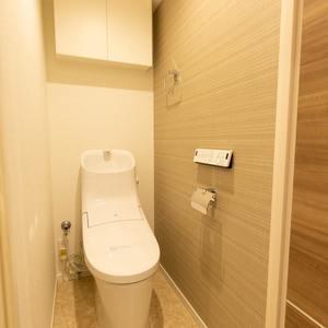 目白ビル(7階,3499万円)のトイレ