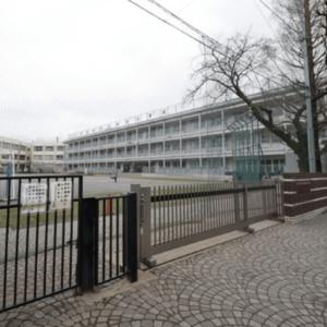 四谷軒第5経堂シティコーポの保育園、幼稚園、学校