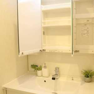 上野の森リリエンハイム(5階,4999万円)の化粧室・脱衣所・洗面室