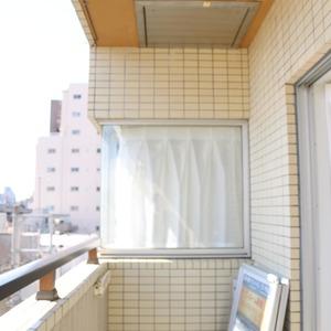 上野の森リリエンハイム(5階,4999万円)のバルコニー