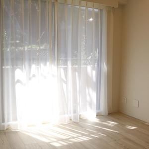 ブリス弥生(2階,)の洋室