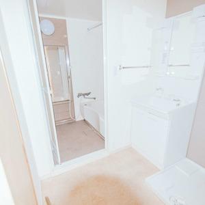 日商岩井恵比寿マンション(2階,5580万円)の化粧室・脱衣所・洗面室